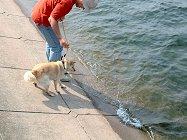 2002年5月ダム湖で