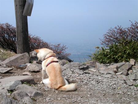 会津磐梯山の山頂