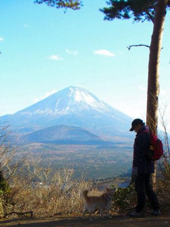 精進湖パノラマ台からの富士山