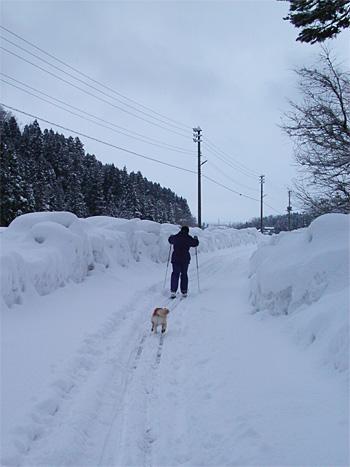 スキーで走って帰る