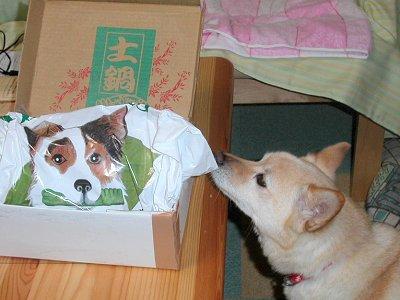 この箱、クンクン