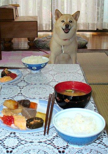 お米つやつやだね?♪