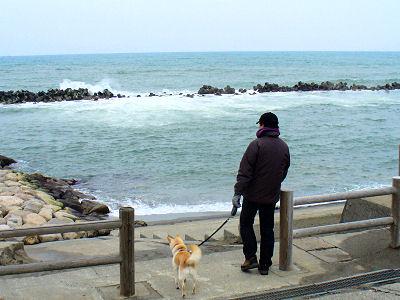 西海岸を見る
