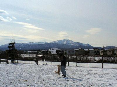 米山もくっきり見えます