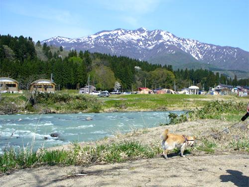 川がきれい