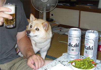 茶豆にビールだね♪