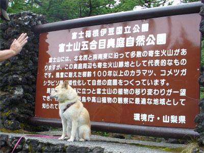 富士山五合目の手前です