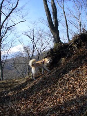 さぁ、登るわよ!