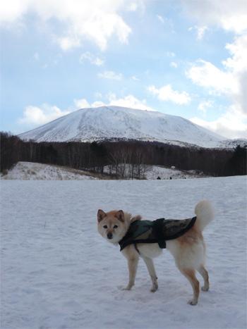 浅間山、見えた♪