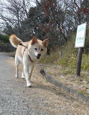 神戸の町、行くでぇ?