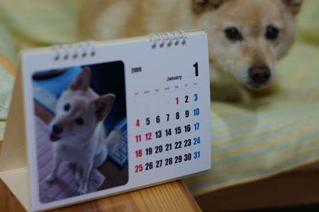 桃クリ3年。カレンダー4年。