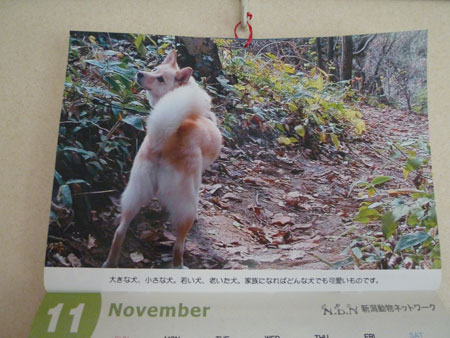 秋の山歩き。