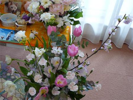 サクラ咲いた。