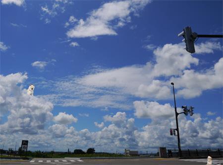 雲の上のぶうこ